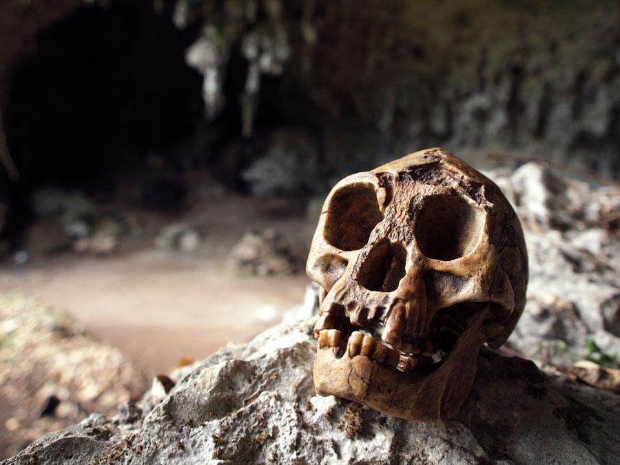 """Resti umani scoperti nella grotta degli """"hobbit"""""""